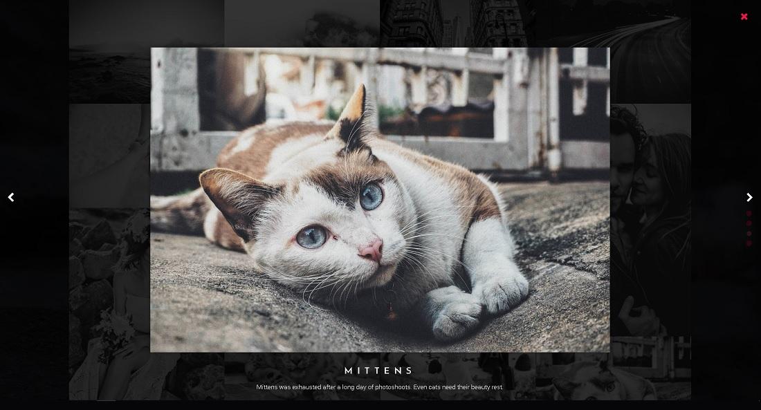 3D Photography Portfolio Page
