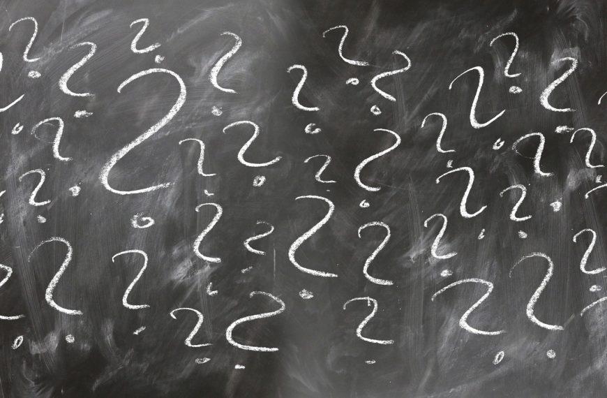 Drupal vs WordPress – Which should you choose?